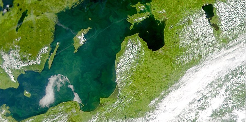 Olga Sarna, Światowy Dzień Ochrony Bałtyku