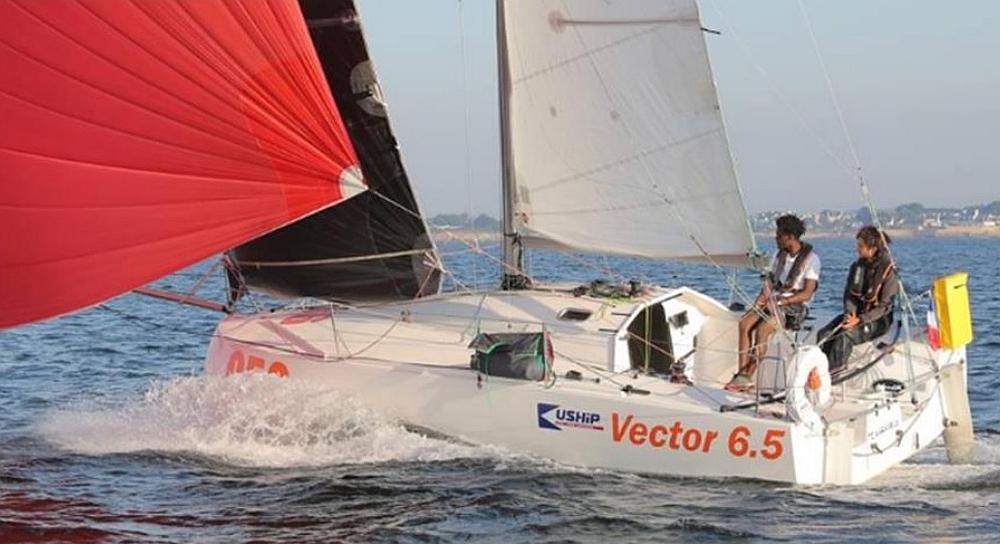 Vector 6,5